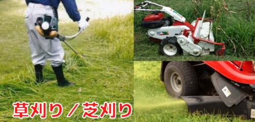 草刈り,芝刈り