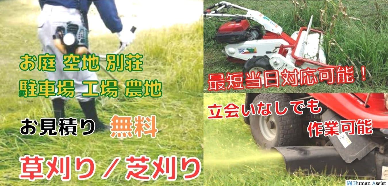 草刈り-芝刈り